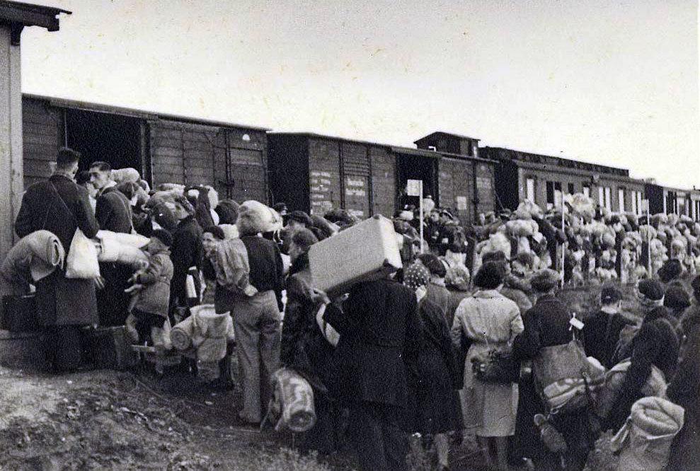 Stoppet før Auschwitz